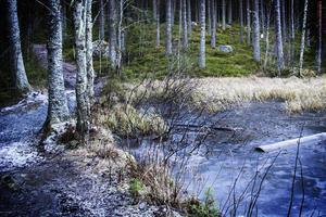 Även dammen ner mot samhället ska restaureras.
