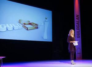 Den Frösöbördiga ordföranden för Riksidrottsförbundet, Karin Mattson Weijber, invigningstalade i strålkastarljus. Men när det svartnade i salongen var det 14 blockljus på scenen och ficklampor som fick stå för ljuset. Foto: Olof Sjödin