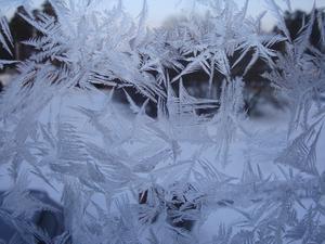 Vackert i kylan.