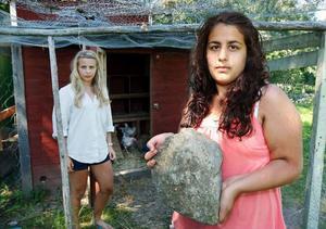 Lina Örjebo och Sara Morad, från Frösön, visar stenbumlingarna som kastats på hönsen.