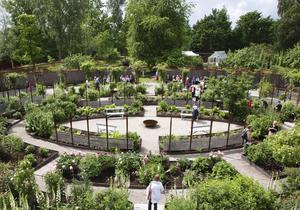 Rosträdgården vid Wij trädgårdar.