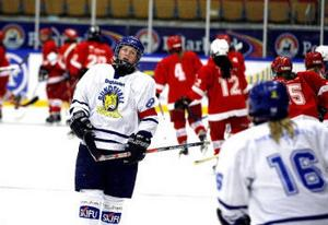 Kommande säsong spelar Sundsvall Wildcats och Timrå IK i likadana tröjor. Klubbarna gick i hop inför fortsättningsserien i våras och nu fortsätter samarbetet under namnet Timrå-Sundsvall.