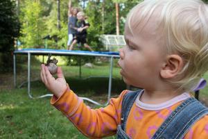 Vem bryr sig om att kusinerna leker på gräsmattan när man hittar en snigel i gräset? Man kan nästan se pratbubblan med Shakespeares bevingade ord