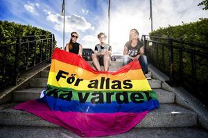 Bakom manifestationen står Solidaritetsgruppen, vars kärngrupp består av sju personer. Cecilia (vill inte nämna efternamn) Axel Ståhlnacke och Gunnel Norberg