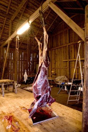Älgköttet har alltid varit mycket eftertraktat.