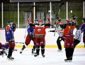 Hockey: Ludvika-Smedjebacken. Smedjebackenjubel efter 0-2-målet.