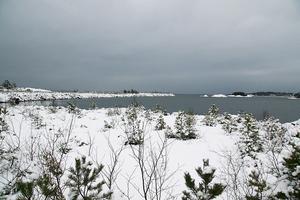 Miljööverdomstolen säger ja till hamnen vid Norvik.