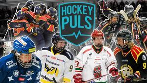 Hockeypuls sänder åtta matcher och visar alla lag i SDHL under de kommande två veckorna.