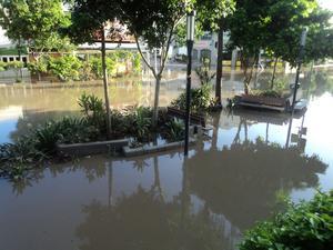 Vattnet har börjat dra sig tillbaka i Brisbane.