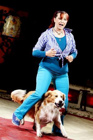 Brazil Jack är en cirkus av den gamla stammen – det innebär att djur medverkar i föreställningarna. Foto: Britt Mattsson