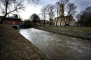 Västerås. Debattörerna vill utveckla området kring Svartån för att bygga en så kallad faunaväg i Stadsparken.foto: scanpix