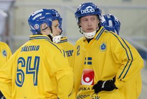 Det svenska försvaret 2015: Daniel Välitalo och Olov Englund – två profiler som saknas inom svensk elitbandy den här säsongen.