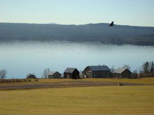 Många miljöfaror hotade Alsensjön under förra året. Bland annat efter Jämtkrafts borrningar i området.Foto: Arvesunds Living AB