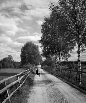 FOTO: HANS LIDMANGamla landsvägen, det är Hans Lidmans fru Clary Lidman som kommer och går.