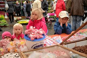 Längtansfullt. Godis är gott och syskonen Albin, Elsa, Sofia och Stina Nordling stannade till vid ett av godisstånden på höstmarknaden.