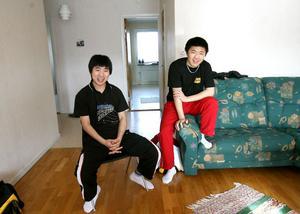 I en trea inte långt från Verkstäderna har de kamperat ihop, Sun Jian och Lin Lanxiao.