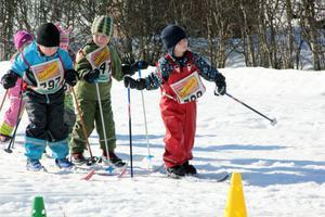 Full fart i spåret när de äldre barnen kommer farande. Längst fram åker Emil Arvidsson, tätt följd av Melker Larsson, Albin Berglund, Wilma Wikström och Kerstin Nilsson.