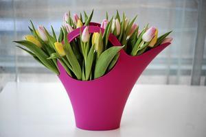 Leta vaser på nya ställen. En knallfärgad vattenkanna ger skön kontrast till pastellbuketten.