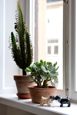 Att arrangera några stilleben på utvalda platser i hemmet väcker nyfikenhet och skapar en positiv känsla hos besökaren.