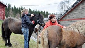 Elin Eriksson visar Marina Toptyguna ryktar hästarna på rätt sätt.