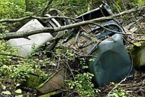 Foto: LEIF JÄDERBERG Soptipp. Mitt i den lummiga skogen sticker tre bilvrak upp. På närmare håll syns också soppåsar och rostiga tunnor under tunna lager av växtlighet.