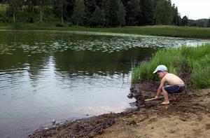 Om man upptäcker algblomning bör framför allt barn och husdjur hållas borta från vattnet.