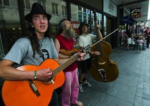Plommonstop. Familjen Brise spelar folkmusik med jordiga rötter. Foto:Mikael Forslund
