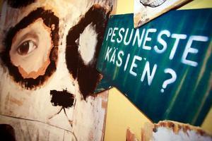 Pesunete Käsien – något med schampo på finska och något på en bild på Jamtli.
