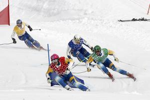 Under lördagen kördes SM i Skicross i Lofsdalen