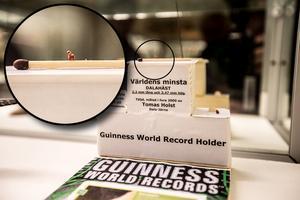 Världens minsta dalahäst fyller 15 år och finns med i Guinness rekordbok.