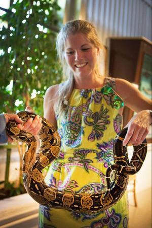 Att kela med ormar hör inte till vardagen på LT och en viss tvekan förelåg uppgiften. Men den cirka 1,7 meter långa kungsboan Diablo visade sig vara riktigt charmig när vi träffade honom, en dag före showen med Alice Cooper.