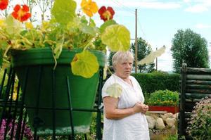 """Nancy och Lennart Lindbäck får ofta frågan vad de gödslar med för att få sin trädgård att blomstra. """"När vi svarar att vi inte gödslar tror folk att vi ljuger"""", säger Nancy Lindbäck.Foto: Sandra Högman"""