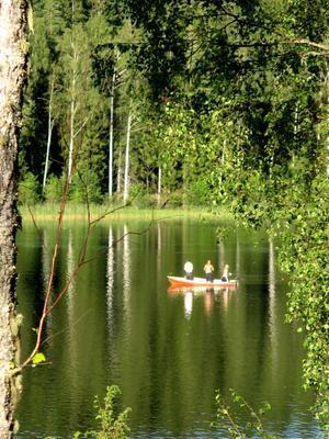 En vacker sommarkväll vid Mjögsjön i Arvika tog jag denna fina sommarbild. Undrar om det nappade?