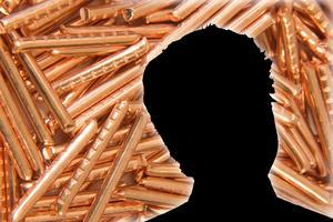 Den unga misstänks för flera brott. Bilden är ett montage av genrebilder.