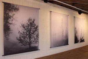 Det finns en mystik i Sara Norlings lågteknologiska landskapsbilder.