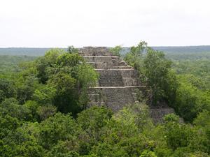 En lämning efter den miljöförstörande mayakulturen.