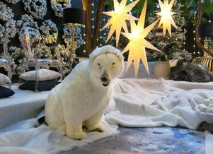 Barnen stannar gärna till för att titta på isbjörnen som rör på huvudet. Om även butikens stora isbjörn (3,5 meter) kommer fram i år återstår att se.