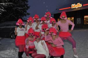 Flamingos hade hittat hela vägen till Skalet från Frösön.