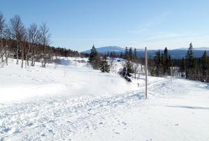 Enligt Snofed finns det 5 200 mil snöskoterleder i Sverige.