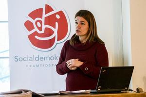 På onsdagens presskonferens presenterade Anna-Caren Sätherberg (S) den parlamentariska landsbygdskommitténs 75 förslag för en starkare landsbygd.