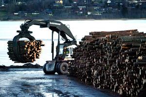 Hur mycket virke finns i lager? Kalle Forsmans idé Lumberscan gör det lättare att beräkna.