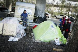 – Det är klart att vi skulle vilja ha jobb i stället för att tigga. Städjobb eller vad som helst, säger Camelia som är en av de rumäner som tältar under Frösöbron.