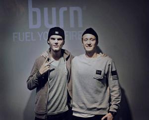 Tim Bergling, även känd som Avicii – en av världens största dj:s – gav Erik Hagström flera bra tips när de möttes.