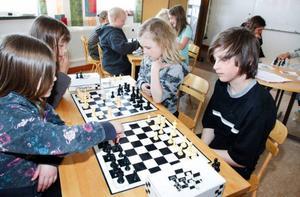 Här kör eleverna lite extra träning, vid bordet närmast sitter från vänster och sedan medsols Cornelia Vesterlund, Gry Jacobsson, Frida Östman och Sackarias Isaksson.