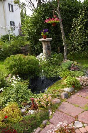Fint. I ett hörn av en bla kvadat stor trädgård. Foto:Karolina Lundgren