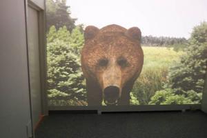 Tommy Andersson tar fram träffbilden på en djuret där skytten kan se precis hur skottet tog.