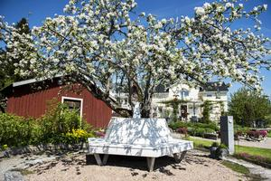 En fiffig sittbänk har byggts runt det gamla äppelträdet – en perfekt plats för lata sommardagar.