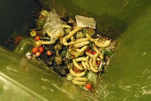 Insamling av matavfall kan bli infört inom några år.