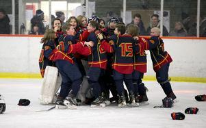 Stort jubel blev det förstås när Djurgården vann finalen mot  HC Bilina.