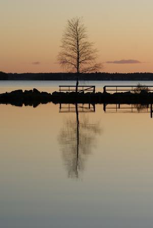 En promenad vid Öster Mälarstrand, solen har precis gått ner och vattnet ligger spegelblankt.